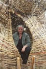 woven willow ancient oak tree by Beryl Smith