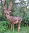 woven willow deer by Beryl Smith