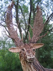 woven willow stag by Beryl Smith
